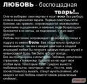 img_5037134_107_0.jpg
